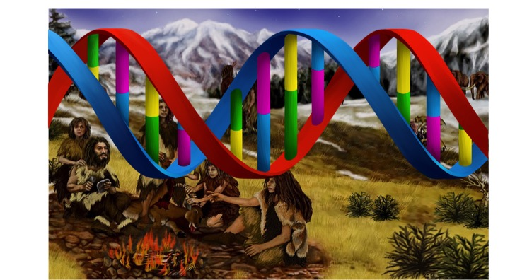Journeys Written in DNA
